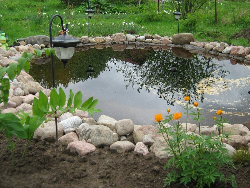Ideas about pool chemicals on pinterest pools swimming natural stepping stones divide bio zone from