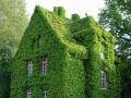 Красивые и необычные дома