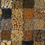 <b>Заготовка и хранение семян</b>