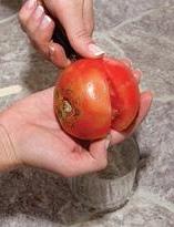 Заготовка и хранение семян