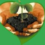 <b>Органические удобрения (виды, плюсы, минусы, примеры эффективных удобрений)</b>