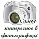 фотогалереи
