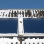 <b>Солнечный коллектор для нагрева воды своими руками</b>