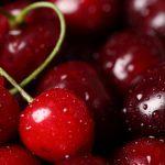 <b>Полезные свойства, секреты правильного выращивания вишни и черешни</b>