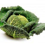 <b>Правила выращивания савойской капусты в открытом грунте</b>