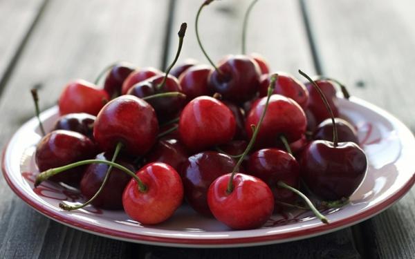 выращивание черешни и вишни